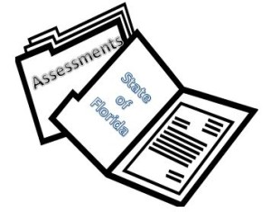 assessment for florida medicaid