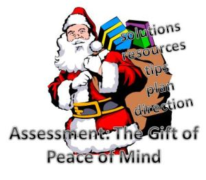 gift of the geriatric care management assessment