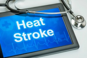 heat stroke symptoms